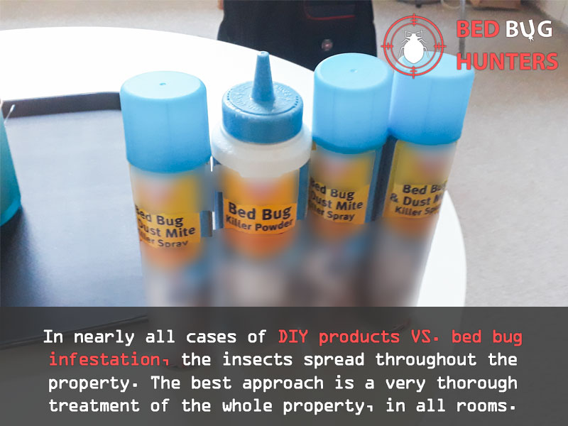 General info about DIY bed bug products